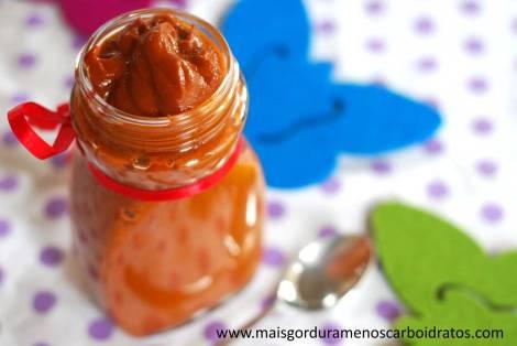 ketchup-sem-carboidratos-4